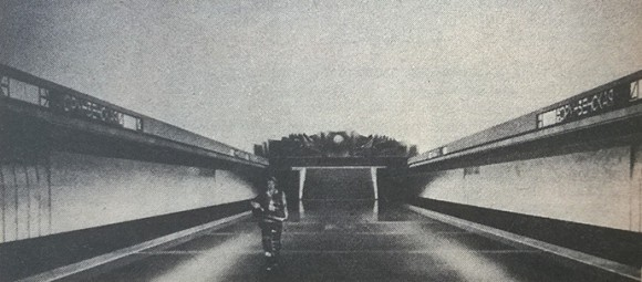 avto-line-15