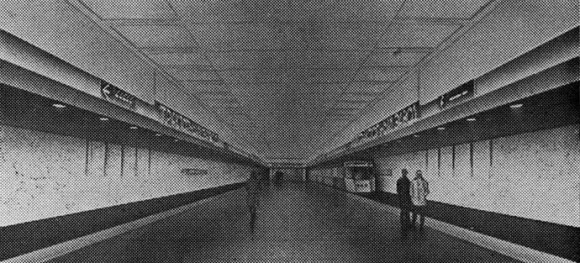 avto-line-40